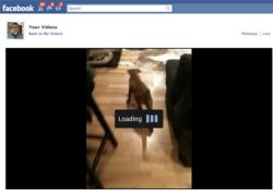 facebook-video-blogSpan